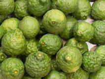 Bergamot or ma krud, herb of asia Stock Images