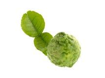 Bergamot or ma krud, isolated on white background. Royalty Free Stock Photo