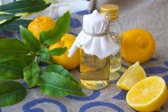Bergamot oil. A bottle of bergamot oil. Bergamot fruits in the background stock images