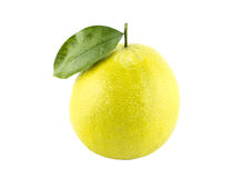 Bergamot oranges. On white background (with clipping work path royalty free stock photos