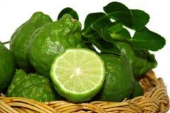 Bergamot organisch kruid Stock Afbeelding