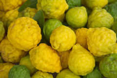 Bergamot ripe Kaffir lime Royalty Free Stock Images