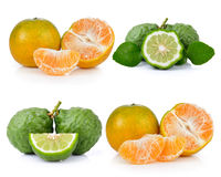 Bergamot and tangerine Royalty Free Stock Image