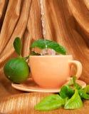 Bergamot tea Stock Images