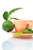 Bergamot tea Royalty Free Stock Photos