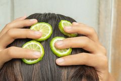 Bergamot and treatment of hair and scalp. That is itching and falling royalty free stock photo