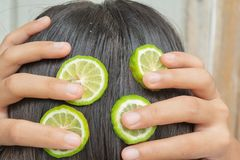 Bergamot and treatment of hair and scalp. That is itching and falling stock image