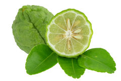 Bergamot. The bergamot on the white background royalty free stock image