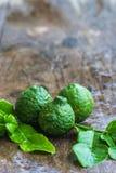 Bergamot on wood floor. All fresh bergamot on wood floor royalty free stock photography