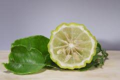 A bergamota tailandesa é vegetal Foto de Stock Royalty Free