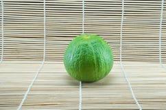 Bergamotboom Royalty-vrije Stock Fotografie