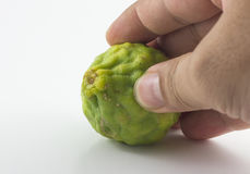 Bergamotfrukt och hand som isoleras på vit bakgrund Arkivfoto