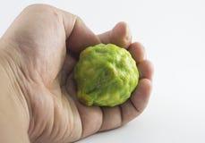 Bergamotowa owoc i ręka odizolowywający na białym tle Obrazy Stock