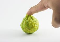 Bergamotowa owoc i ręka odizolowywający na białym tle Obrazy Royalty Free