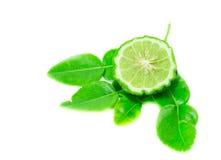Bergamotowa owoc z liściem na białym tle obraz stock