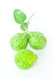 Bergamotte auf weißem Hintergrund Stockbild