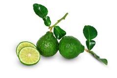 Bergamottenkalkfrucht auf weißem Hintergrund stockfotos