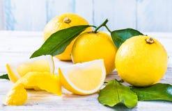 BergamottenZitrusfrucht aus Süd-Italien Lizenzfreie Stockbilder