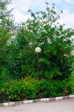 bergaska och lampa Royaltyfria Bilder