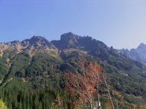 Bergatumn Stockbild