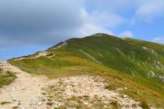 Bergbakgrund, Tatra berg, Polen Royaltyfria Bilder