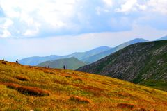 Bergbakgrund, Tatra berg, Polen Arkivbild