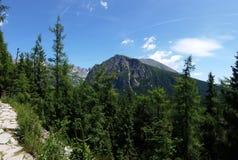 Bergbana i höga Tatras royaltyfri bild