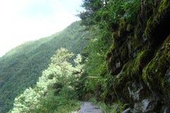 Bergbana med stenar Royaltyfri Fotografi