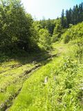 Bergbana som-var på kullen royaltyfri bild