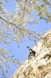 Bergbeklimming in de lente 2 Stock Afbeelding