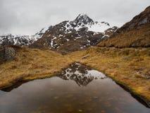 Bergbezinning, Routeburn-Spoor, Nieuw Zeeland Stock Afbeeldingen