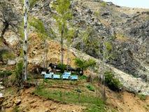 Bergbijenstal Royalty-vrije Stock Foto's