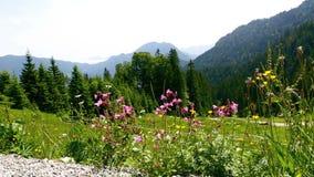 Bergblick in den bayerischen Alpen, Deutschland stock footage