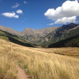 Bergblick durch Weizen Stockfoto