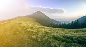 Bergblick am hellen sonnigen Sommertag Grünes grasartiges Tal, dunkler gezierter Wald und hohe Bergspitze auf klarem blauem Himme lizenzfreie stockfotos