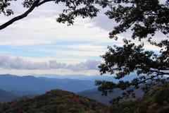 Bergblick mit Bäumen und Wolken Stockfoto