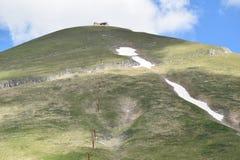 Bergblick mit Gebäude auf Spitze und Schnee Lizenzfreie Stockfotos