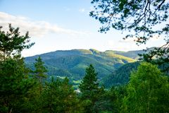 Bergblick vom Wald Stockfotos