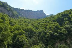 Bergblick von Tsey-Schlucht Republik von Nord-Ossetien - Alania, Russland Lizenzfreies Stockfoto