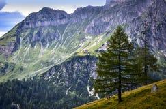 Bergchalet Arkivfoton