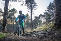 Bergcyklist Royaltyfria Bilder