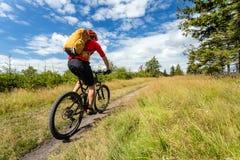 Bergcyklist som cyklar ridning i trän och berg Arkivbilder