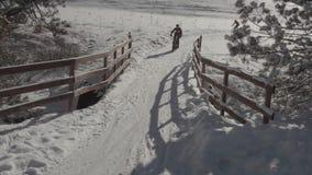 Bergcyklister som rider i den Colorado snön arkivfilmer