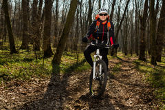 Bergcyklistridning på cykeln i det mest springforest landskapet Fotografering för Bildbyråer