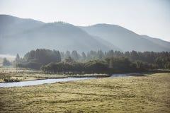 Bergdal nära Ust-Kan, Charysh flod Fotografering för Bildbyråer