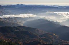 Bergdal och skogdimma Arkivfoto