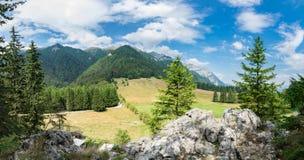Bergdalpanorama, Rumänien, Stana Regala från Bucegi Arkivbilder