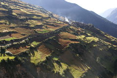 Bergdorf umgeben durch Felder - Nepal Stockfotografie