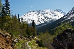 bergdrev Fotografering för Bildbyråer