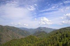 Berge bedeckt durch Bäume und blauen Himmel mit weißen Wolken Lizenzfreie Stockfotos